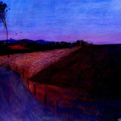 Glenn Brady Chinderah fields at Dusk 2