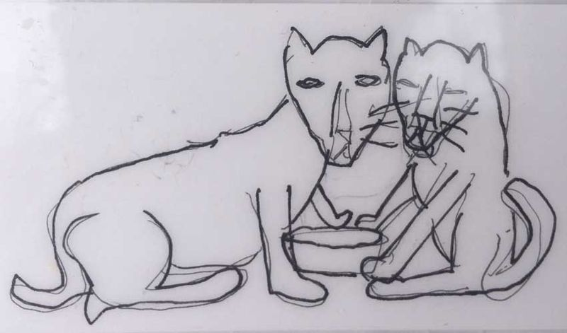 Cats Feed me drawing