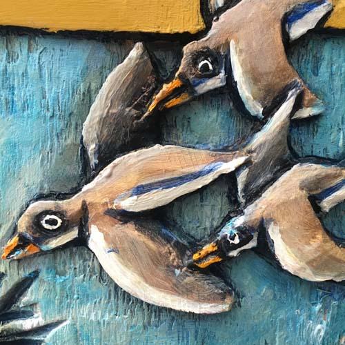 Close up birds